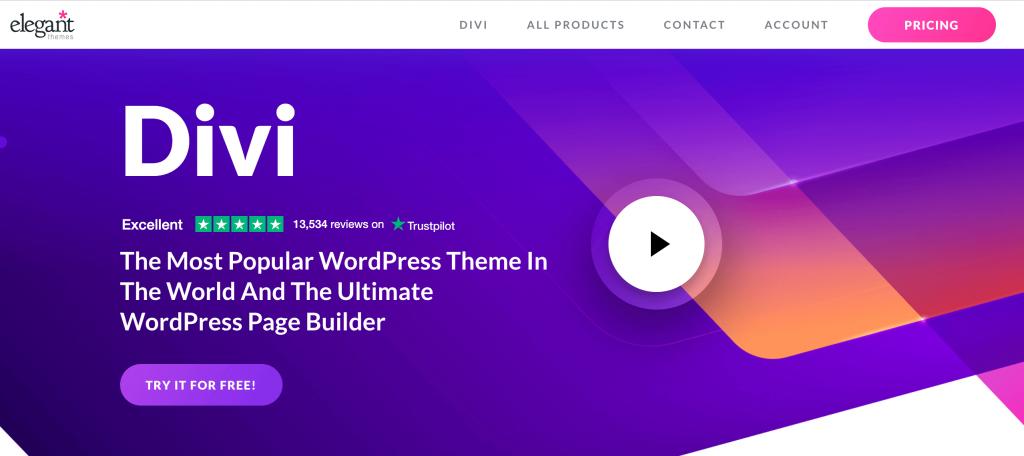 The Divi WordPress page builder.