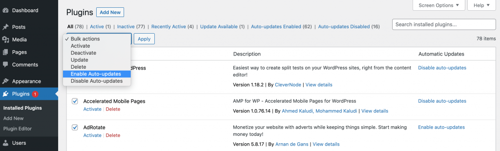 WordPress enable auto-updates dashboard.