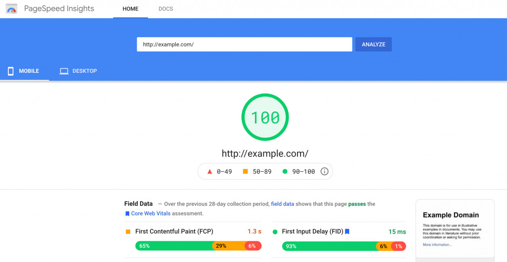 The Google PageSpeed Insights dashboard.
