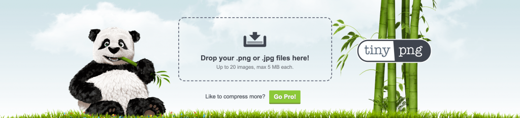The TinyPNG service.