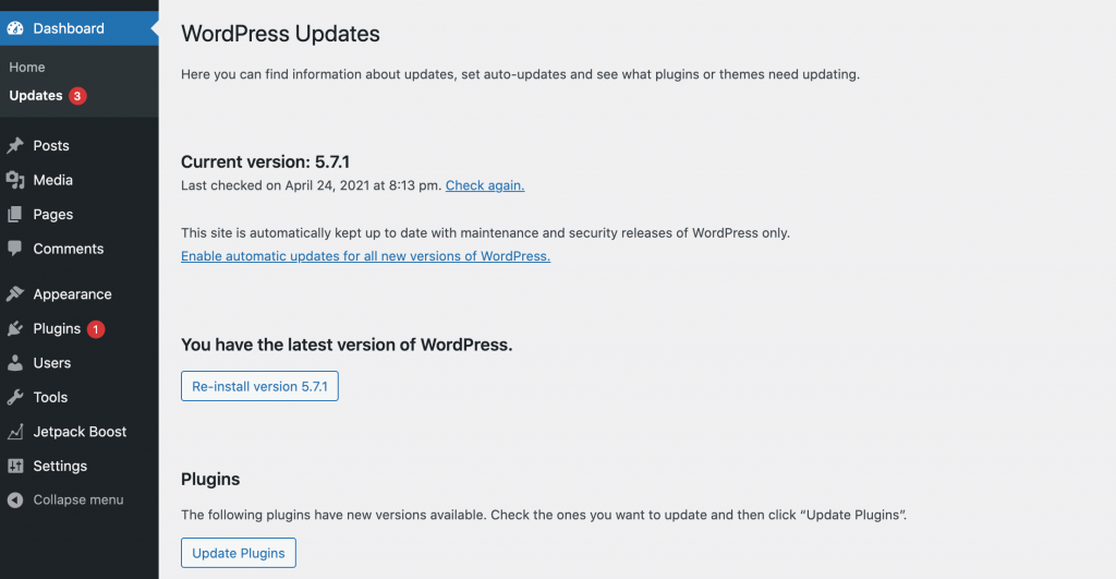The WordPress auto-updates dashboard.