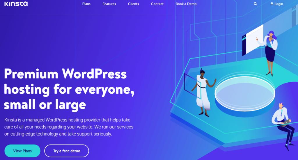 Kinsta's premium WordPress hosting.